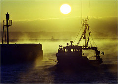 Dawns First Catch.